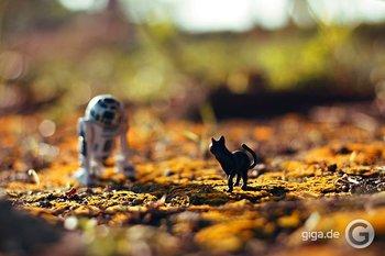 """""""Dramatische Alltags-Abenteuer"""" von Star Wars Miniatur-Figuren"""
