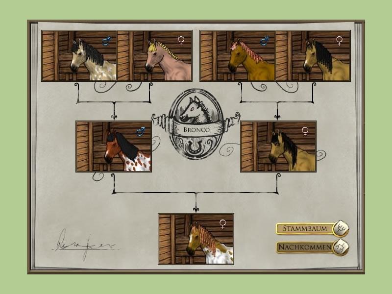 die besten pferdespiele kostenlos online spielen