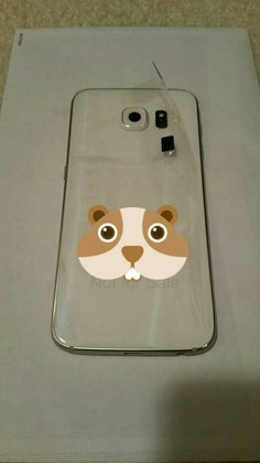 samsung-galaxy-s6-leak__4