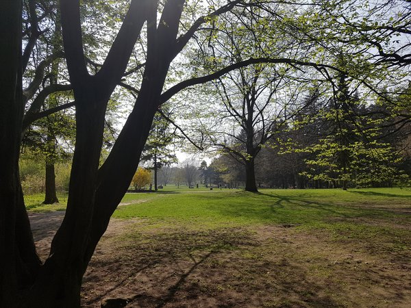 "Testfoto ""Park"": Galaxy S7"