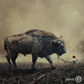 Surreale Foto Manipulation!