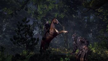 9_the_witcher_3_wild_hunt_horse_ride