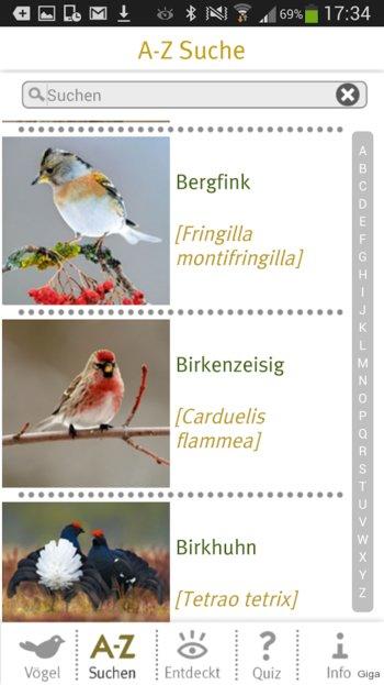 Vögel Mit K