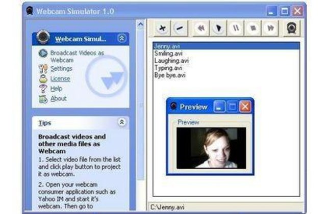 download-webcam-simulator-xp-edition-screenshot