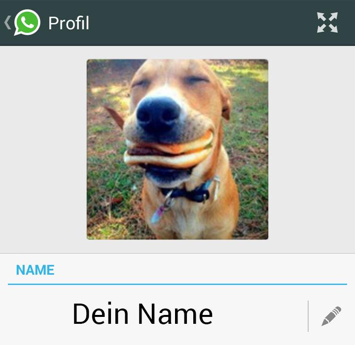 Lustige Profilbilder für WhatsApp, Facebook und Co. - Bild