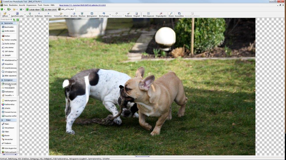 CodedColor-FotoStudio-Pro