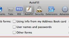 Safari 4 & 5: Sicherheitslücke in AutoFill