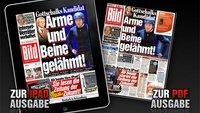 Bild Zeitung: iPad Applikation veröffentlicht und Webseite für iPad gesperrt [Tutorial]