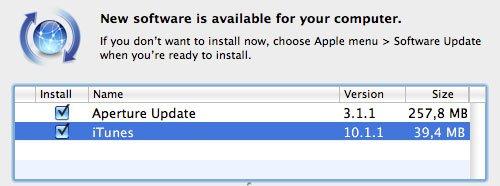 iTunes 10.1.1 Problem