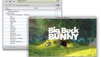 VLC 1.1.6 bringt schnelleres WebM-Decoding