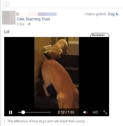 facebook-video-screenshot