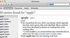 Mac OS X Lion: Do-not-track und Lexikon-Update