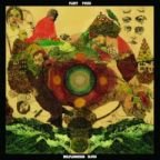 "Fleet Foxes: ""Grown Ocean"" kostenlos legal downloaden, Album ""Helplessness Blues"" erschienen"