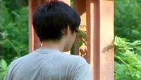 Chinesischer Junge verkauft Niere für iPad