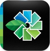 iPhone- und iPad-Bildbearbeitung: Snapseed-App von Nik