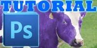 Photoshop Tutorial: Farbe ersetzen