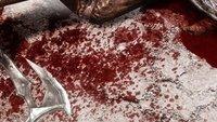 Enhanced Blood Textures für Skyrim