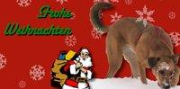 Die eigene Weihnachtskarte: Layout mit Swift Publisher
