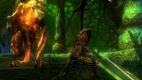 Kingdoms of Amalur - Reckoning: Demo kommt am 17. Januar
