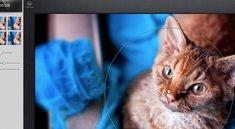 Foto-App Snapseed jetzt auch im Mac App Store
