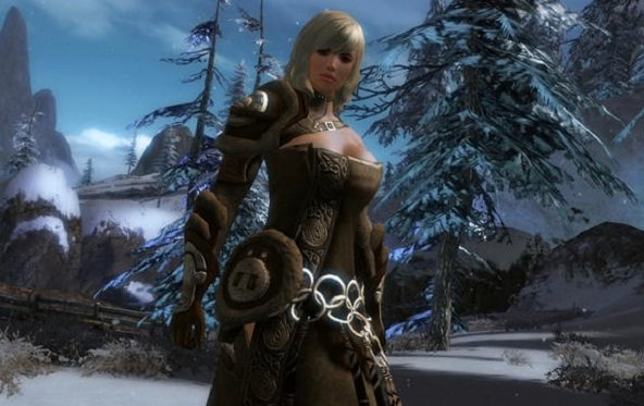 Guild Wars 2: Open Beta angekündigt