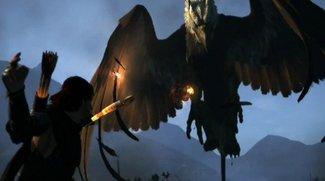 Dragons Dogma: Verschiebung um zwei Monate