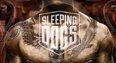 Sleeping Dogs: Entwickler plaudern über das Setting