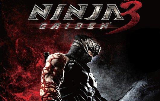 Ninja Gaiden 3 Test - Ninja meiden!
