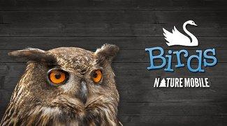 Vogelführer - Vögel bestimmen und mehr