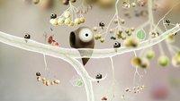 Botanicula Test - Ein Spiel von Träumern für Träumer