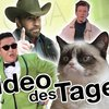 Video des Tages