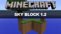 Minecraft Skyblock Spielen - Minecraft skyblock kostenlos spielen ohne download