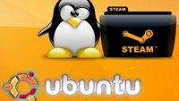 Steam für Linux: Betatest ab Herbst geplant