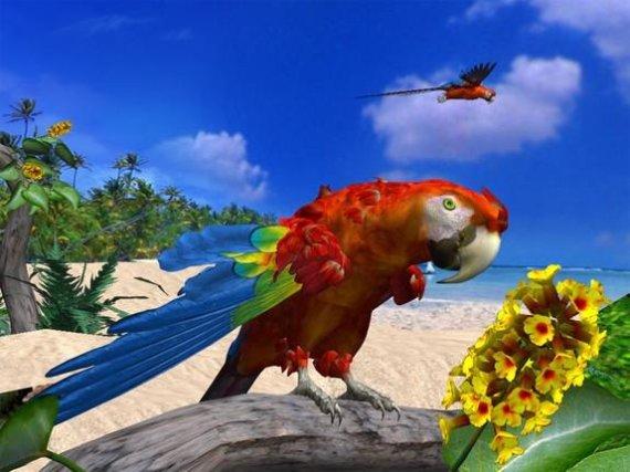 Papagei 3D stellt die schönsten Papageien in einer tropischen Kulisse dar und zaubert so Urlaubsfeeling auf den Computer