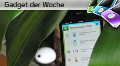 Koubachi: WiFi-Anschluss für Pflanzen