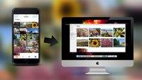 Fotos von iPhone und iPad auf den Mac übertragen, so gehts