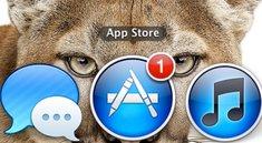 OS X Mountain Lion 10.8.2: Neuer Vorab-Build 12C35