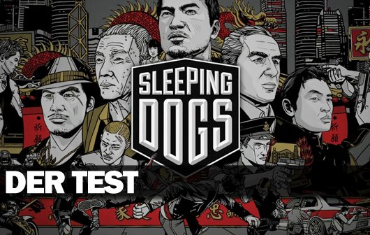 Sleeping Dogs - Video-Review