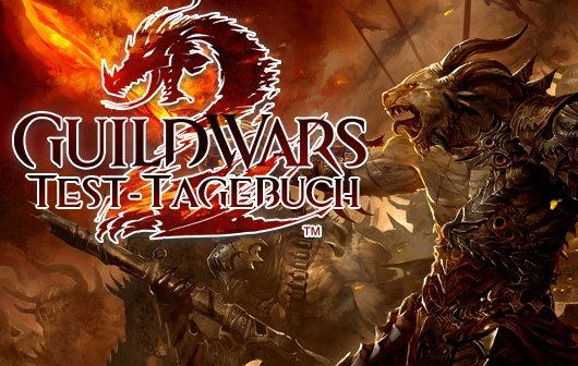 Guild Wars 2 Test – Tagebuch eines Verlierers
