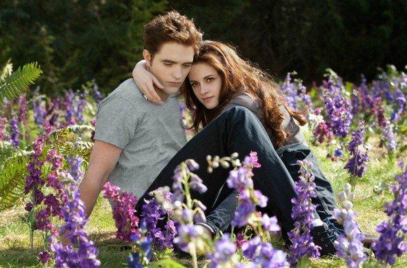 Twilight Blumenwiese