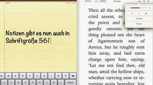 iPad mini: Texte systemweit vergrößern - How-to