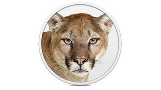 OS X: Fünf Mal Sicherheitsupdate 2013-03