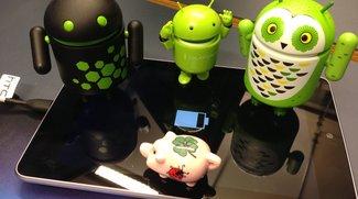 Nexus 7 Problem-Lösung: Tablet startet nicht mehr und lädt nicht