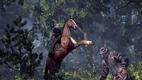 "The Witcher 3: CD Projekt ist ""extrem ehrgeizig"" in Sachen Story"