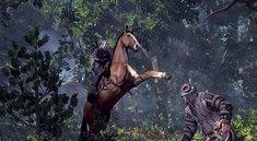 The Witcher 3: Screenshots zur wilden Jagd