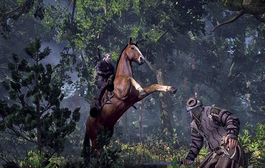 The Witcher 3: Screenshots zur wilden Jagd