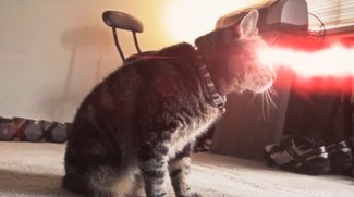 X-Men Origins: Cyclops Cat
