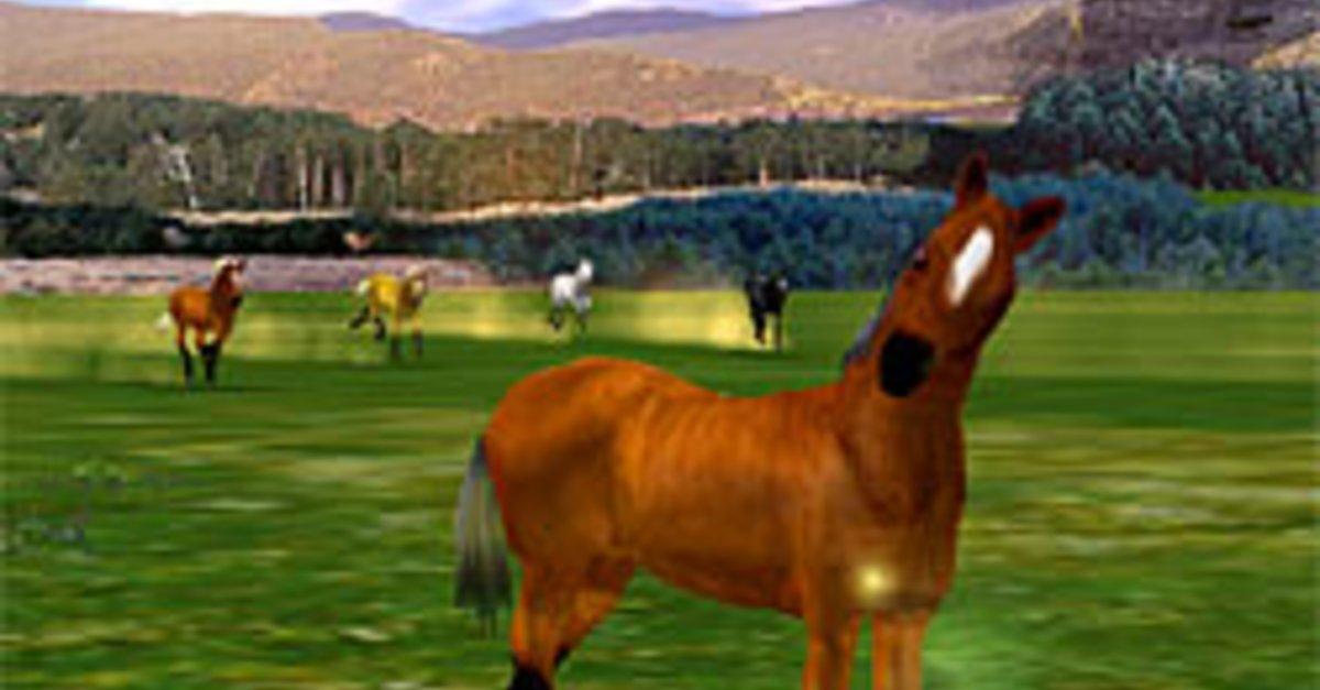 3d Pferdespiele