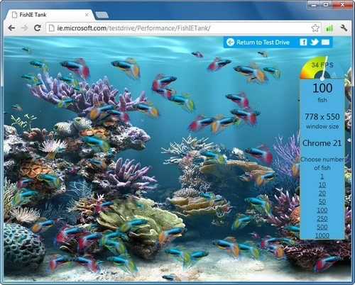 Google Chrome Fishtank-Test