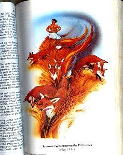 Firefox Logo Ursprung